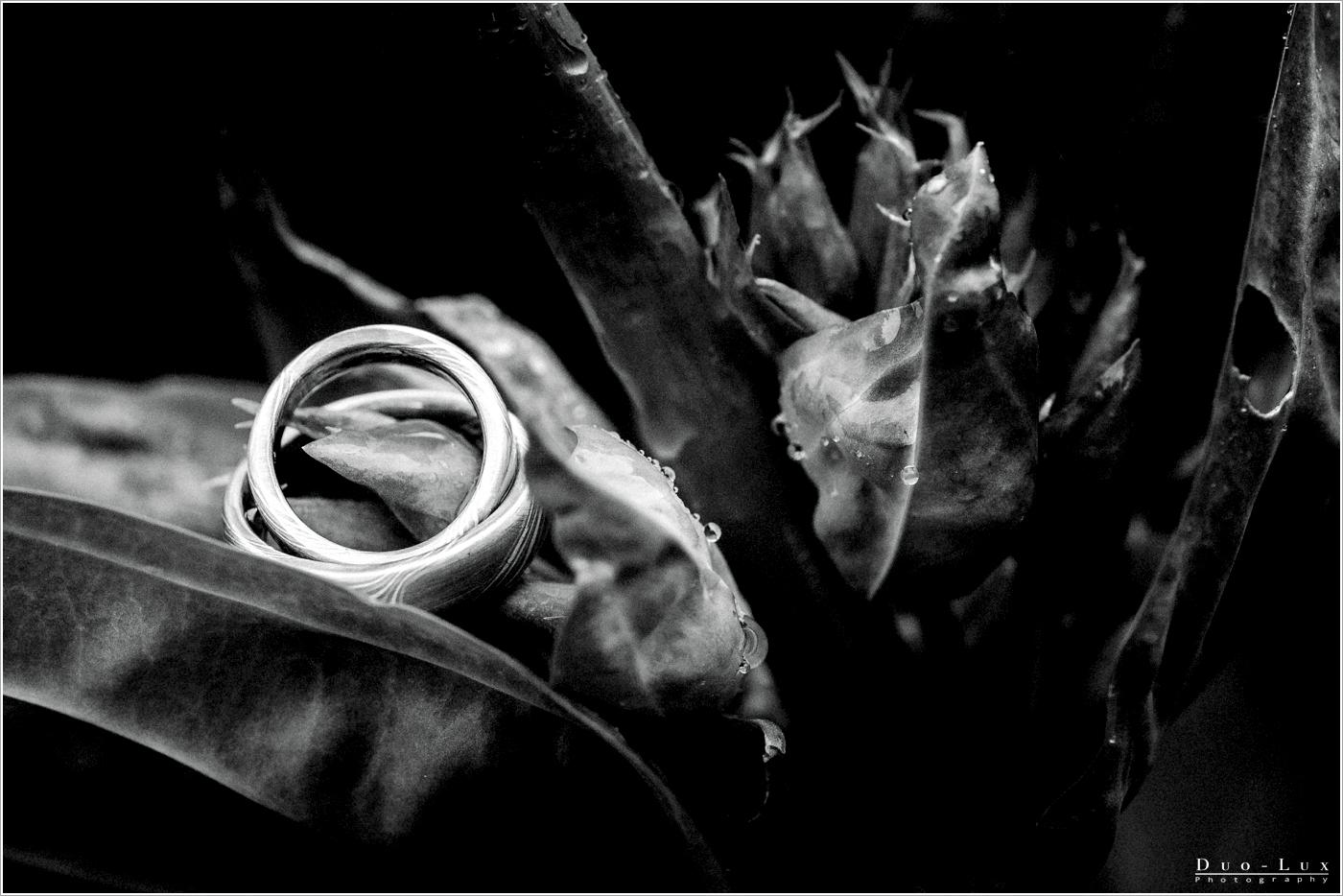 Rocker Hochzeit - Hochzeitsfotograf Wuppertal_0045